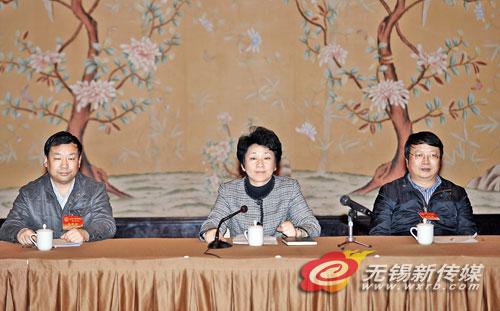 黄莉新参加江阴代表团分组审议